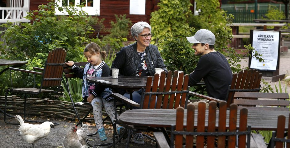 Farmor, son och barnbarn fikar utomhus. Lilla flickan matar en höna. I bakgrunden syns den röda timrade stugan, Spikgården.