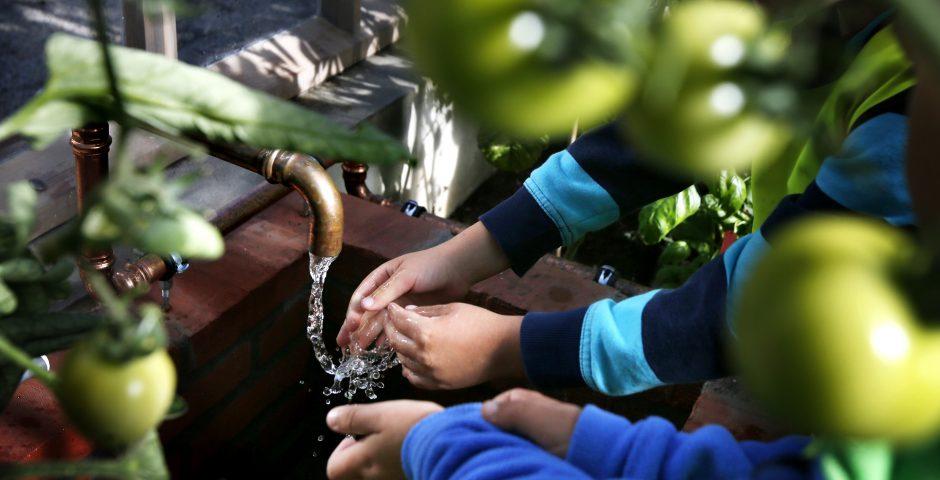 Tvättar händerna i Barnens köksträdgård